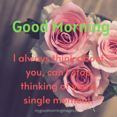 Good Morning My Love Quotes For Him or Her